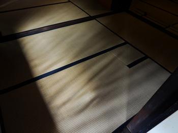 120830_nagatomi1.jpg